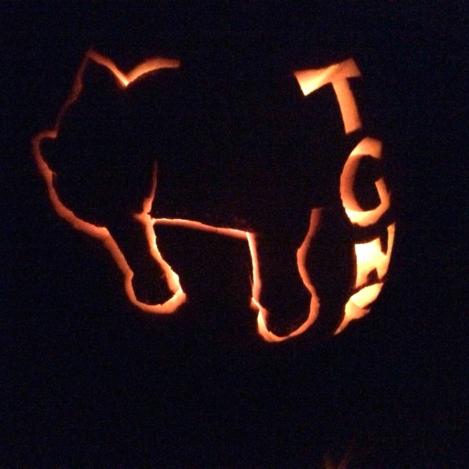 The TGNR Kitty immortalized in Jack-O'-Lantern form. (Image Credit: TGNR)